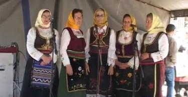 Pevacke grupe u Sevojnu