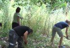 volonteri uredjuju kanjon djetinje