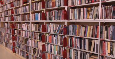 Biblioteka Prijepolje.mpg.Still001